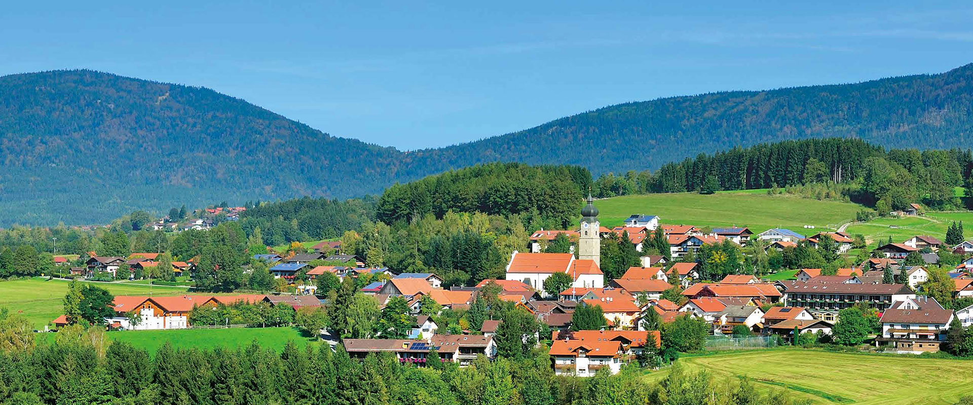 Dorf mit Wald und Wiesen