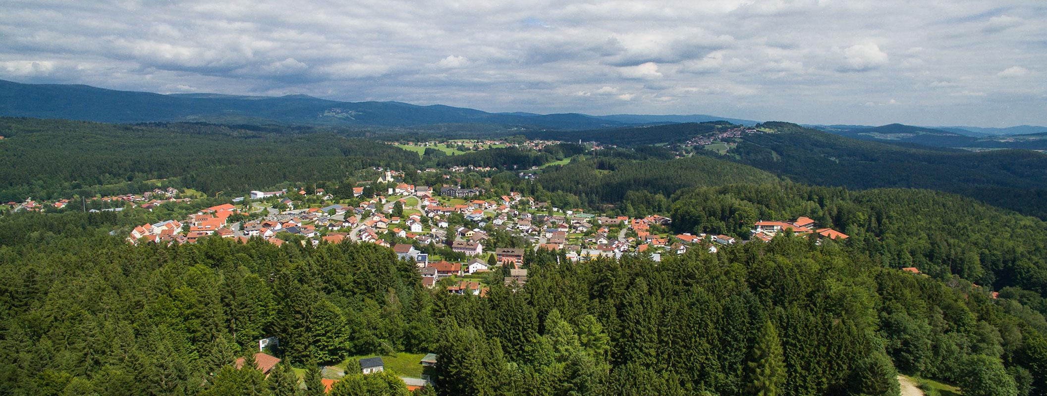 Dorf umgeben von Wäldern und Wiesen